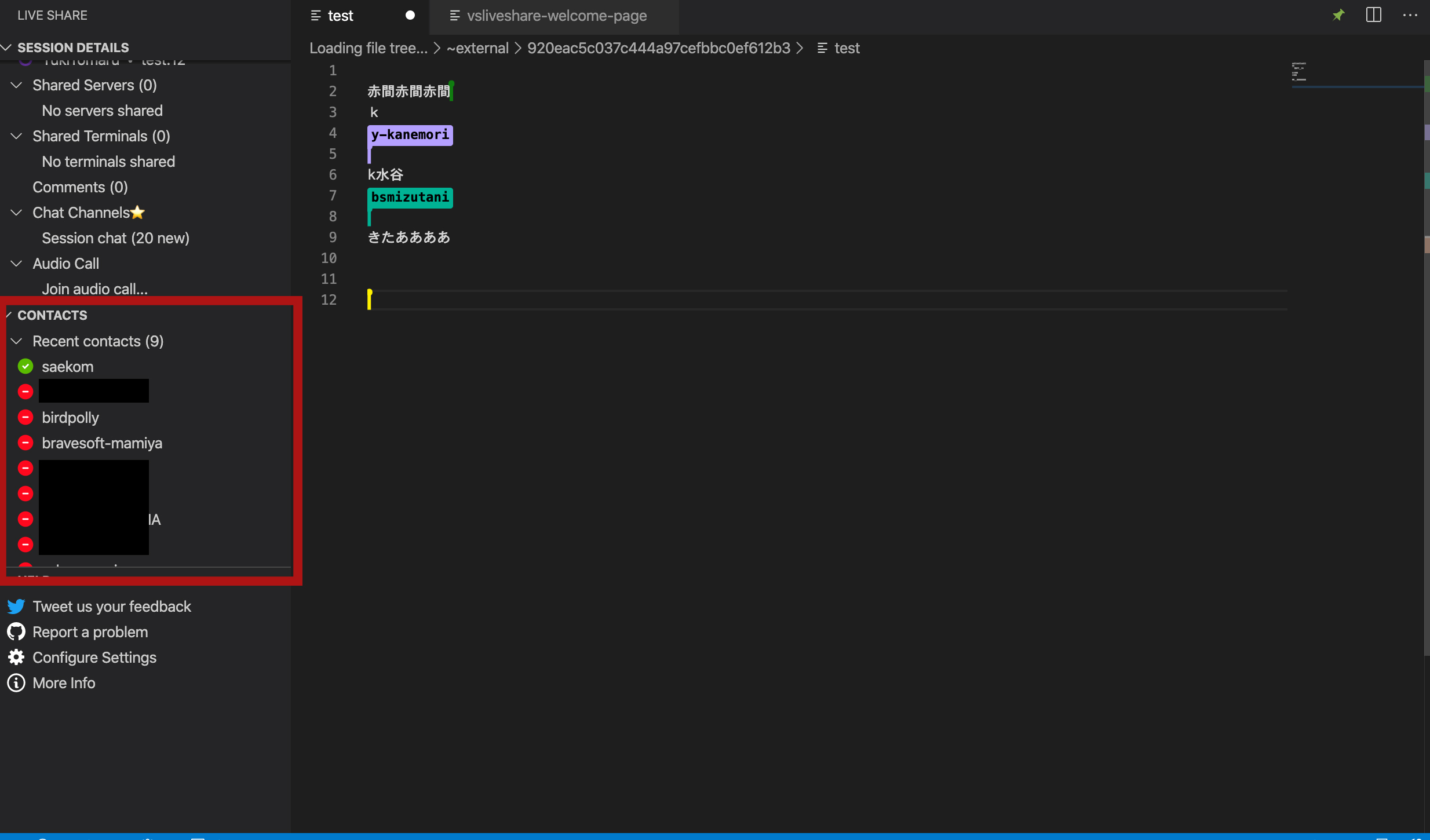 Visual Studio Live Code share